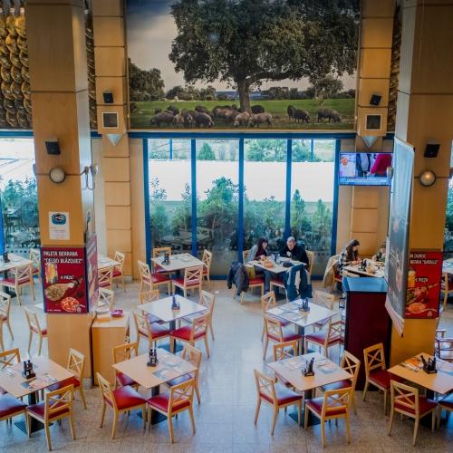 Restaurantes Alcorcón. Restaurantes Parque Oeste Alcorcón. Museo del Jamón
